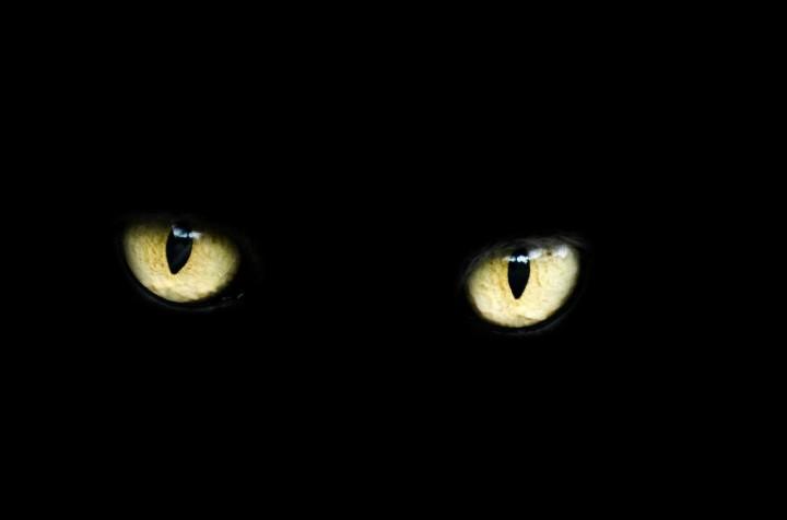 eyes-218185_1280